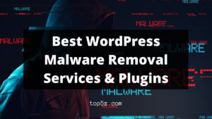 Best WordPress Malware Removal Services