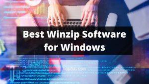 Best Winzip Software for Windows